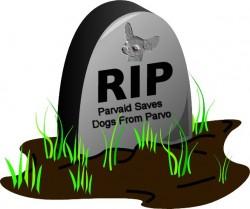 θάνατος σκύλου, ευθανασία σκύλου