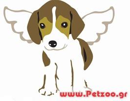 αιτίες θανάτου σκύλου