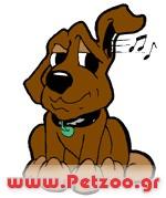 ακοή του σκύλου