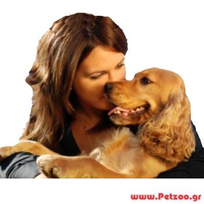 ασθένειες μεταξύ σκύλου και ανθρώπου