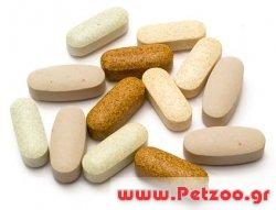 βιταμίνες και συμπληρώματα διατροφής για σκύλους