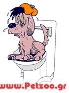 δυσκοιλιότητα του σκύλου