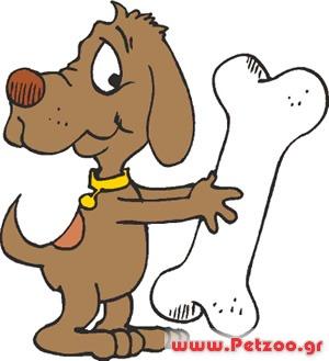 κοκκαλα για σκύλους