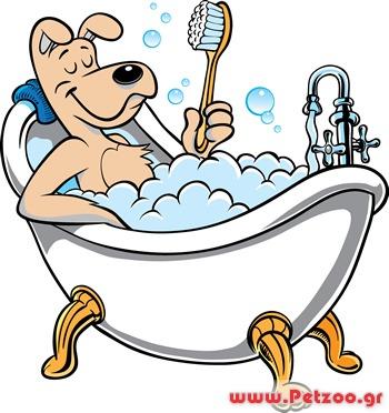 Μπάνιο σκύλος