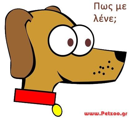 όνομα σκύλου