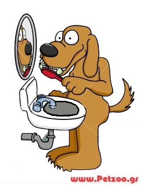 ουλίτιδα στο σκύλου