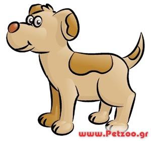 περιτονίτιδα στο σκύλο