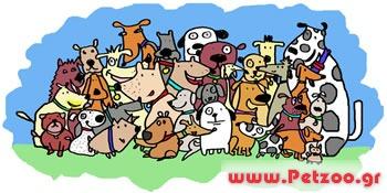 πληθυσμός των σκύλων