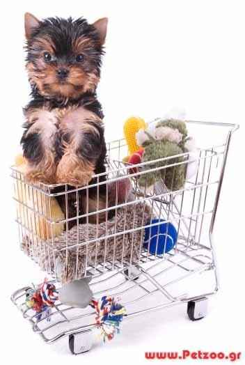 Ψώνια για το σκύλο