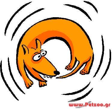 σκύλος δαγκωμα ουράς