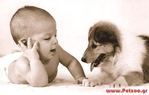 Σκύλος και μωρό στο σπίτι