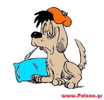 σκύλος με σκουλήκια