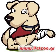 σκύλος με κατάγματα