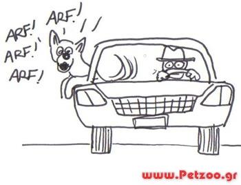 σκύλος μέσα στο αμάξι