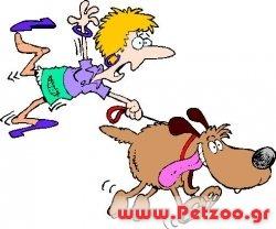 σκύλος τραβάει με το λουρί του