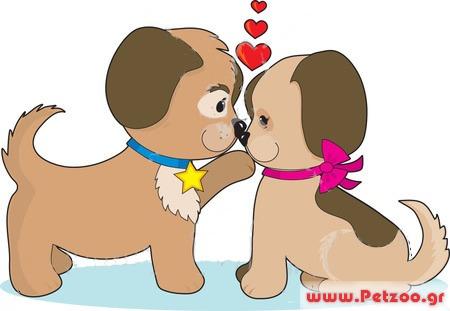 σκυλος και ζευγαρωμα